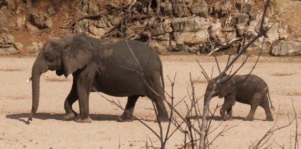 Tansania 2009